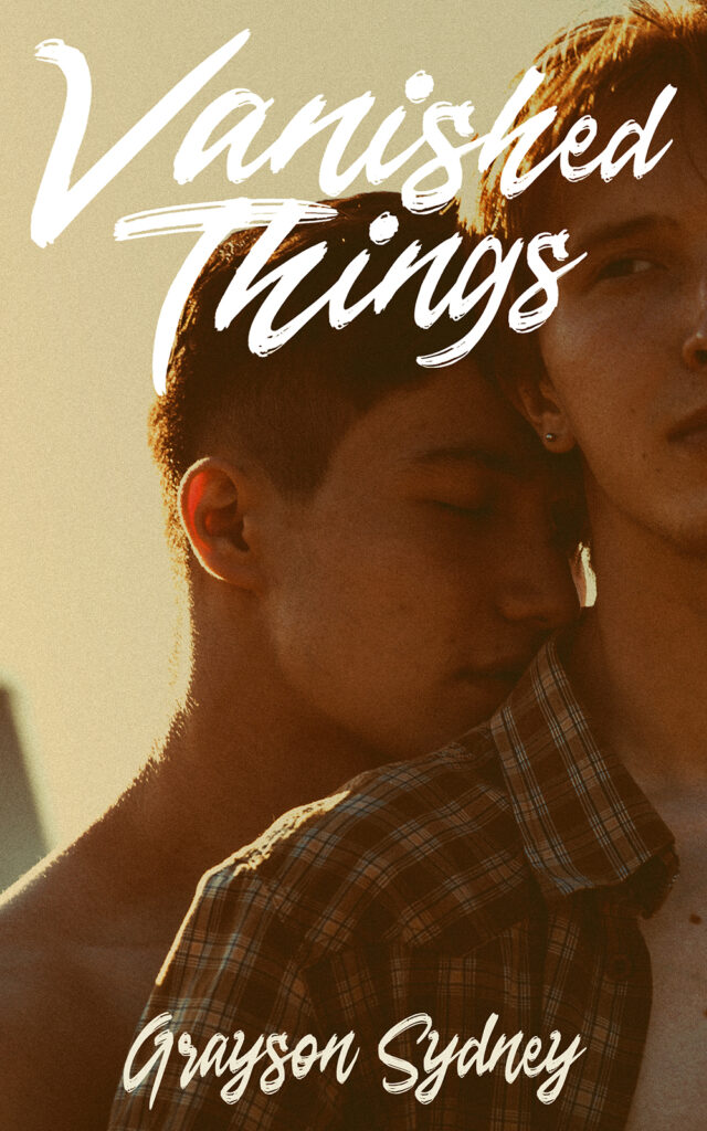 cover of vanished things