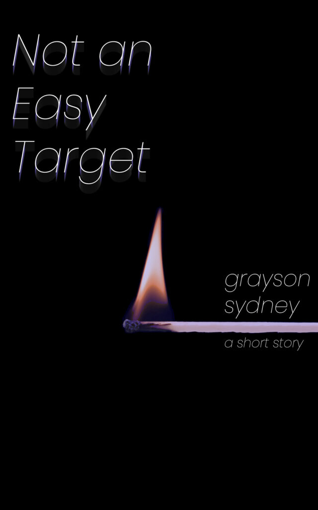 cover of not an easy target
